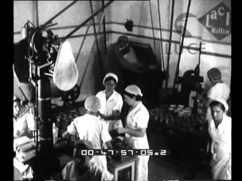 Cheese production in a factory near Ragusa 1962