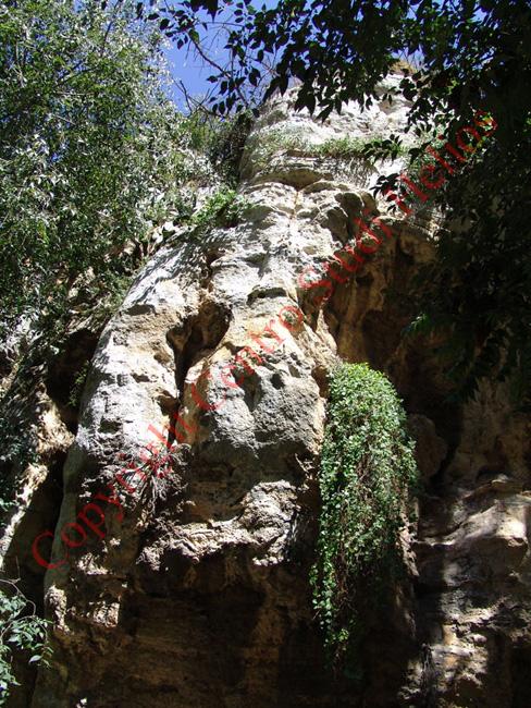 santadomenica29b2